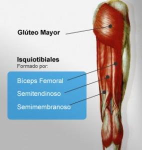 tratamiento_isquiotibiales_cortos