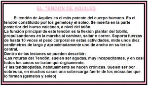 TENDON DE AQUILES